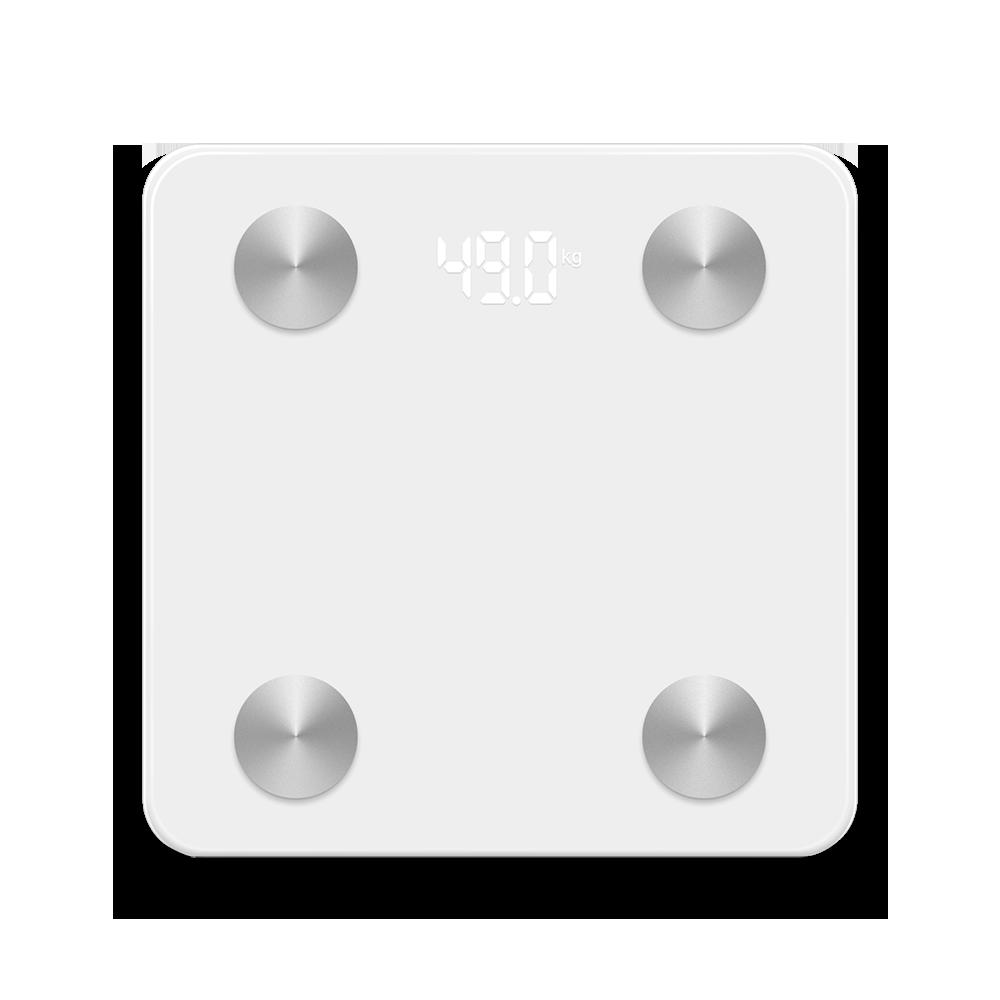 Tenvis_Scale_top